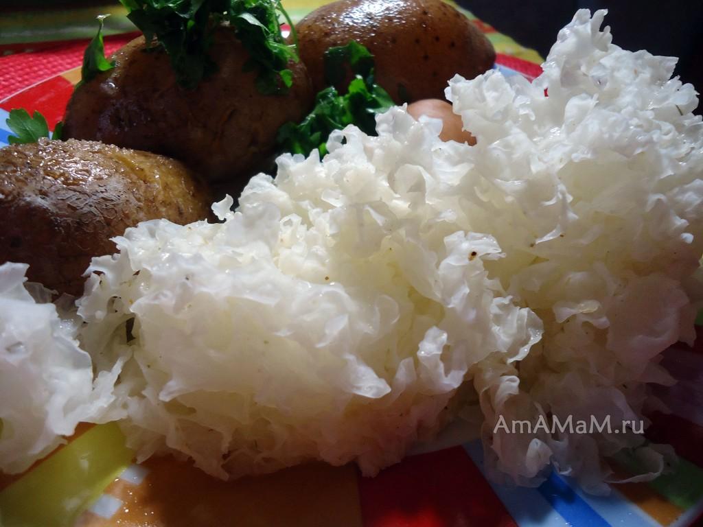 Рецепты сушеных китайских грибов