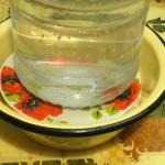 Засолка малосольных грибов под гнетом