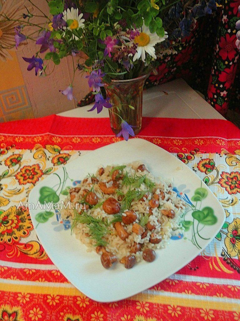 Рецепт жареных грибов-лисичек с рисом