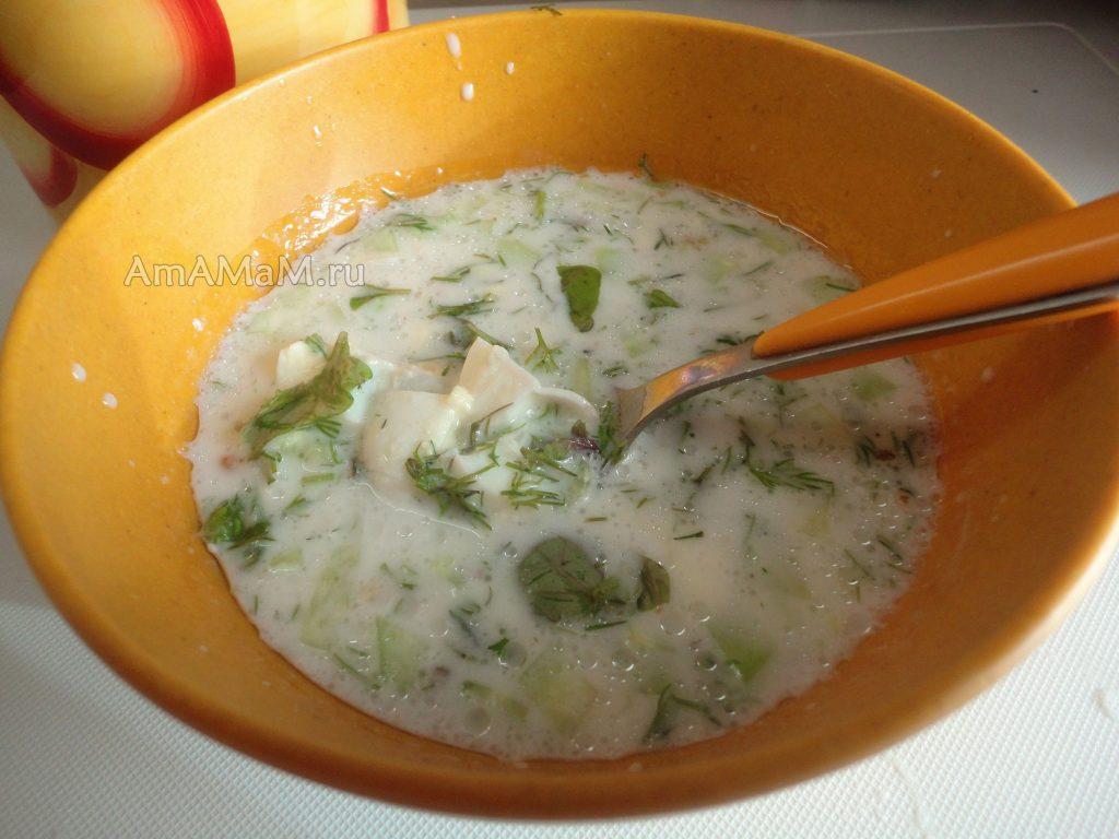 Рецепты окрошки по-болгарски