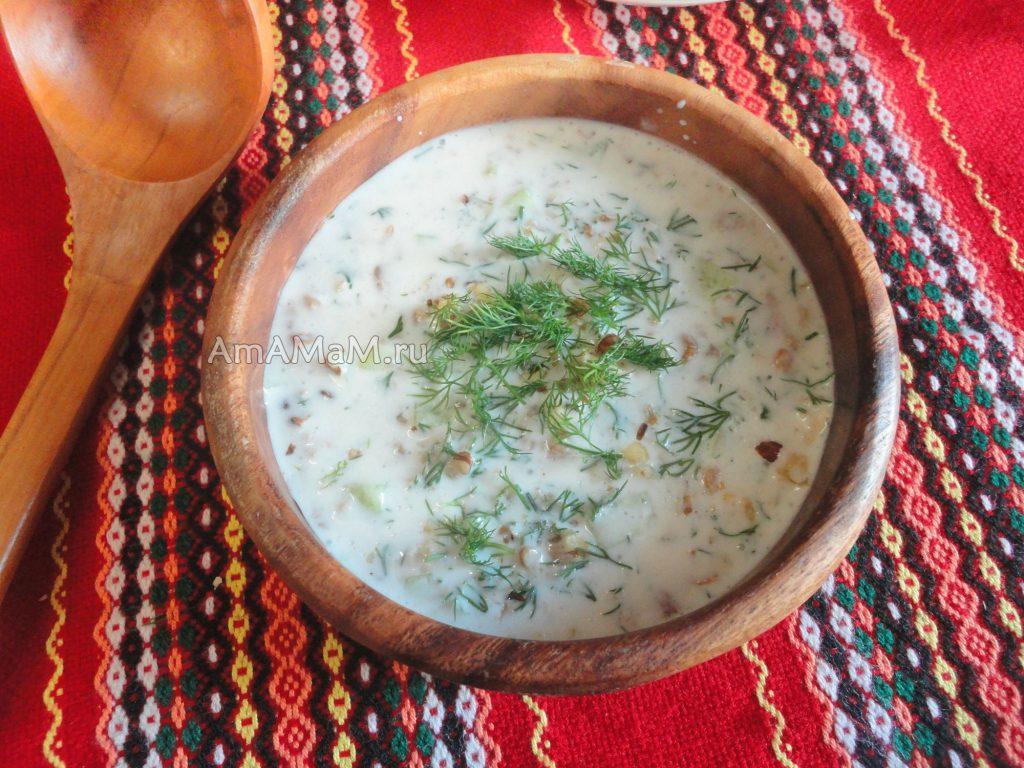 Рецепт таратора по-болгарски и фото приготовления