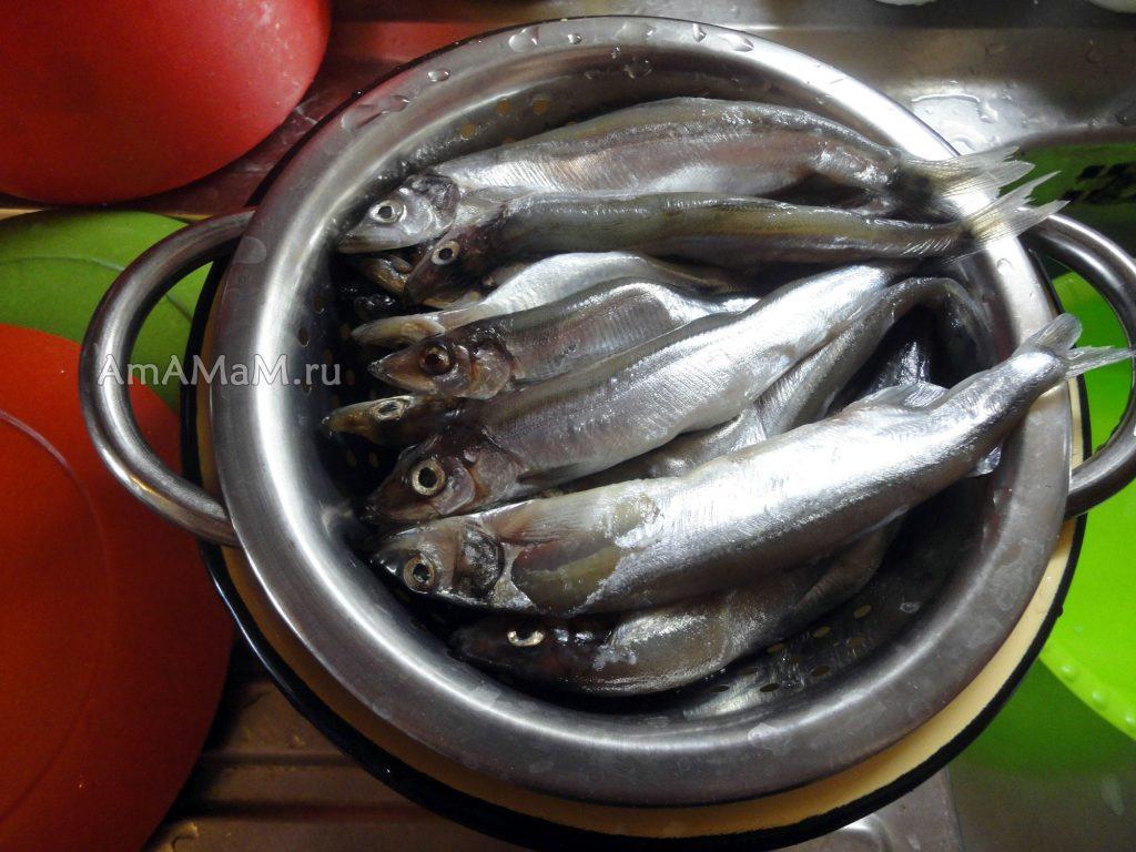 Фото мойвы - маленькой рыбки, неочищенной, с головой, хвостом и внутреностями