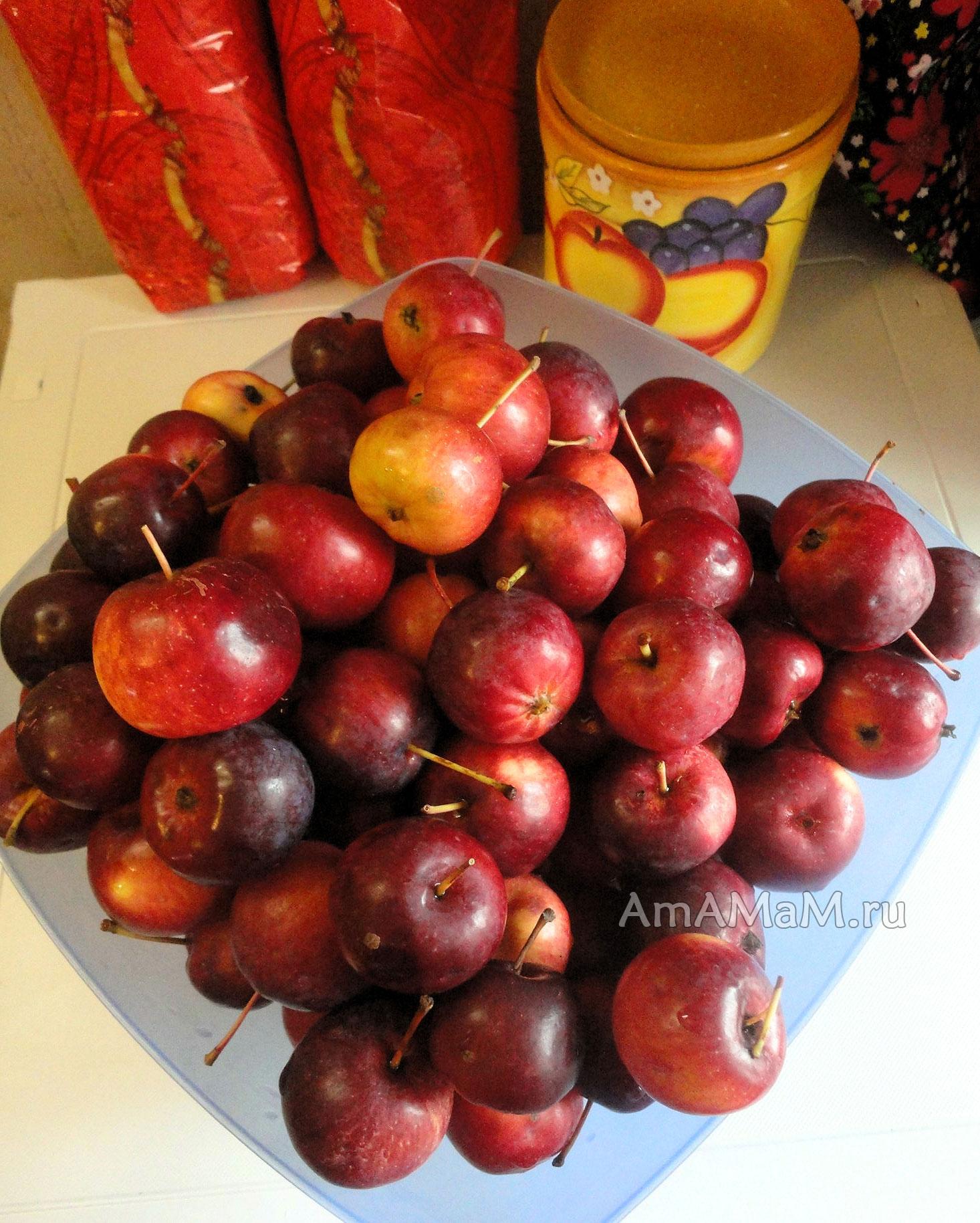 рецепт варенья из мелких яблок китайка