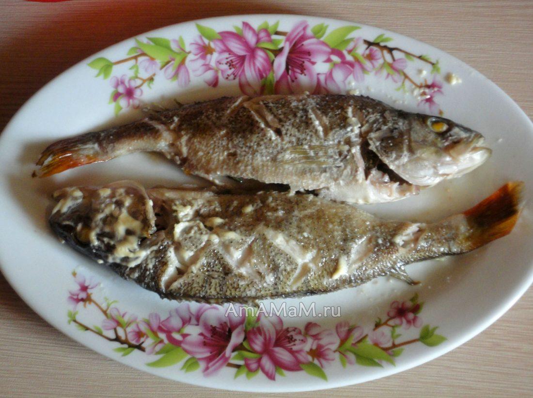 Речная рыба окунь в духовке рецепты