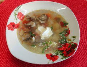 Грибной суп с вешенками, вермишелью и картошкой