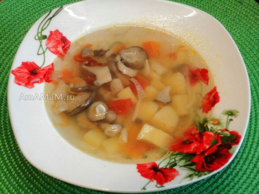 Картофельный супчик с грибами вешенка - рецепт с фото