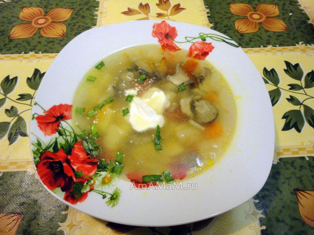 Суп из грибов замороженных белых грибов рецепт пошагово