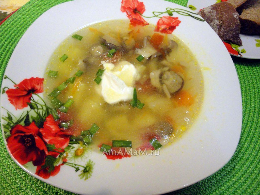 Суп из грибной икры рецепт с фото