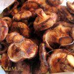 Грибная икра из свинухов (заготовка на зиму)
