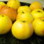 Яблоки и рецепты из яблок