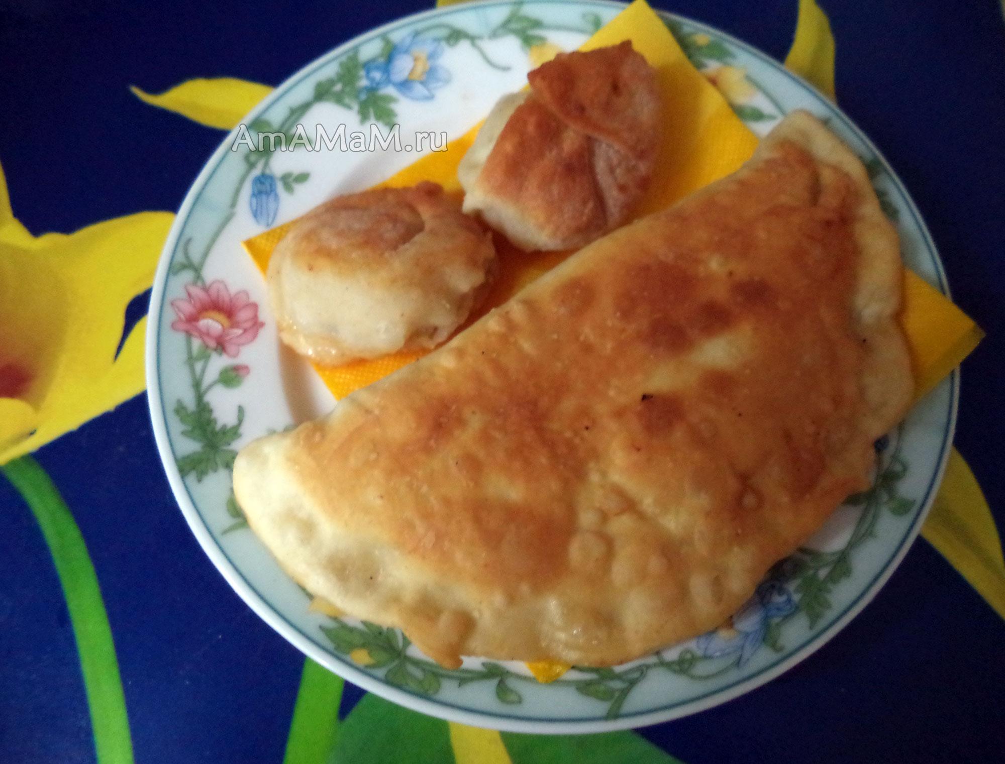 Чебуреки на сыворотке с мясом пошаговый рецепт с фото