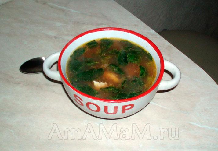 суп со шпинатом рецепт с курицей и