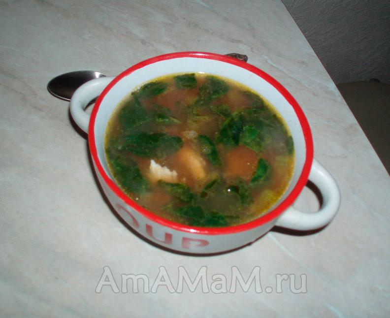 Рецепты вкусных супов из консервированной фасоли