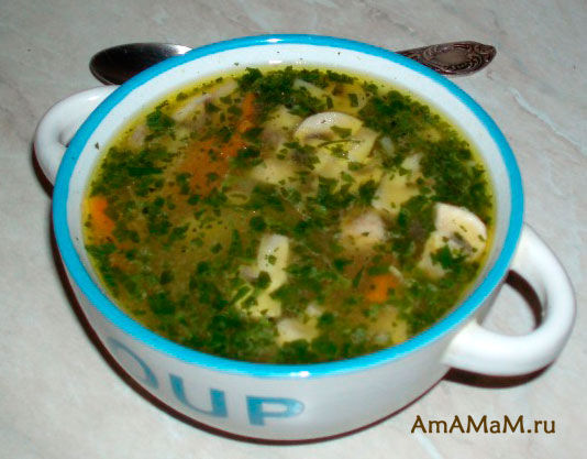 Рецепт супа-лапши с говядиной, грибами и сельдереем и другими кореньями