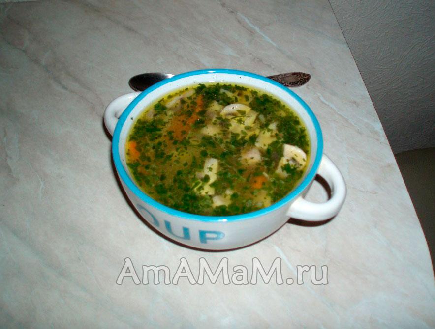 Рецепт говяжьего супа с лапшой с фото