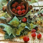 Картина хуждожника Андрианова с ягодами (малина, черная смородина)