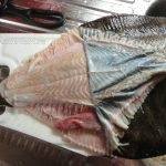 Камбала - этапы чистки рыбы