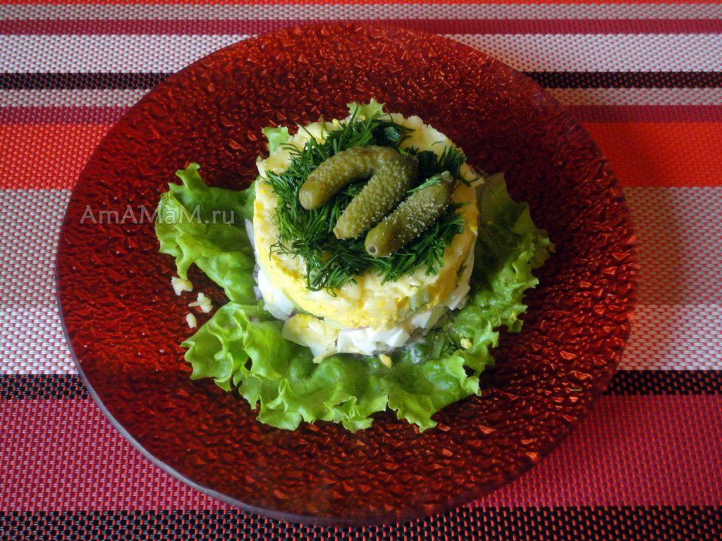 Рецепты слоеных салатов - мясной с языком