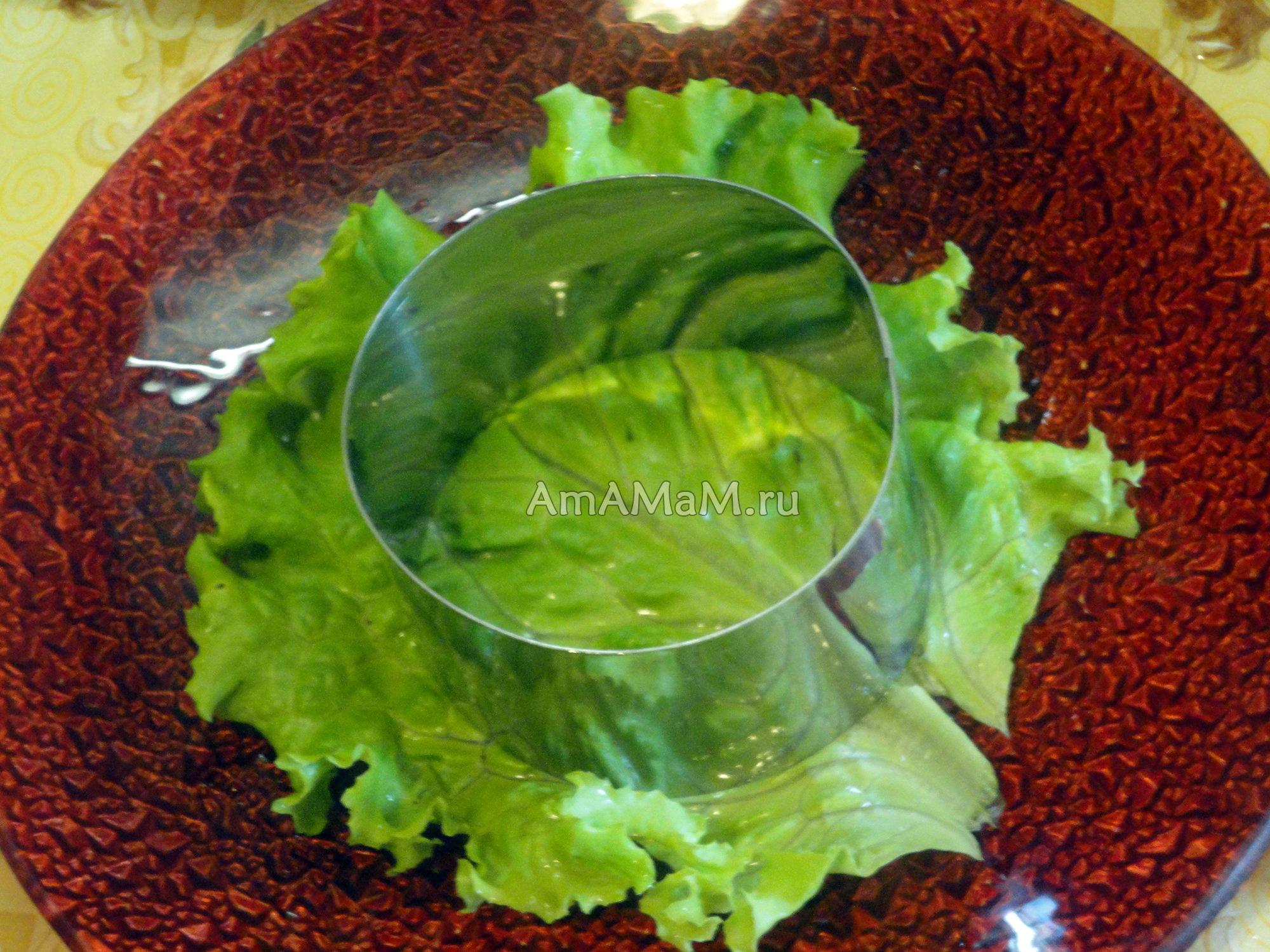 Как сделать салат слоями фото 966