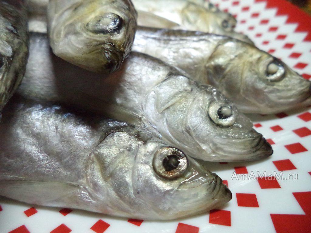 Рыба наутилус- рецепты