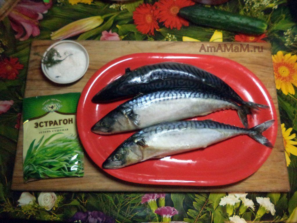 Скумбрия домашнего посола с эстрагоном и солью - состав необходимых продуктов