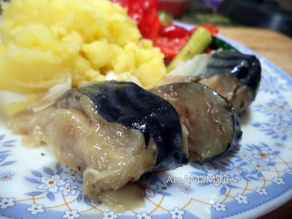 Рецепт засолки скумбрии без рассола под гнетом и фото