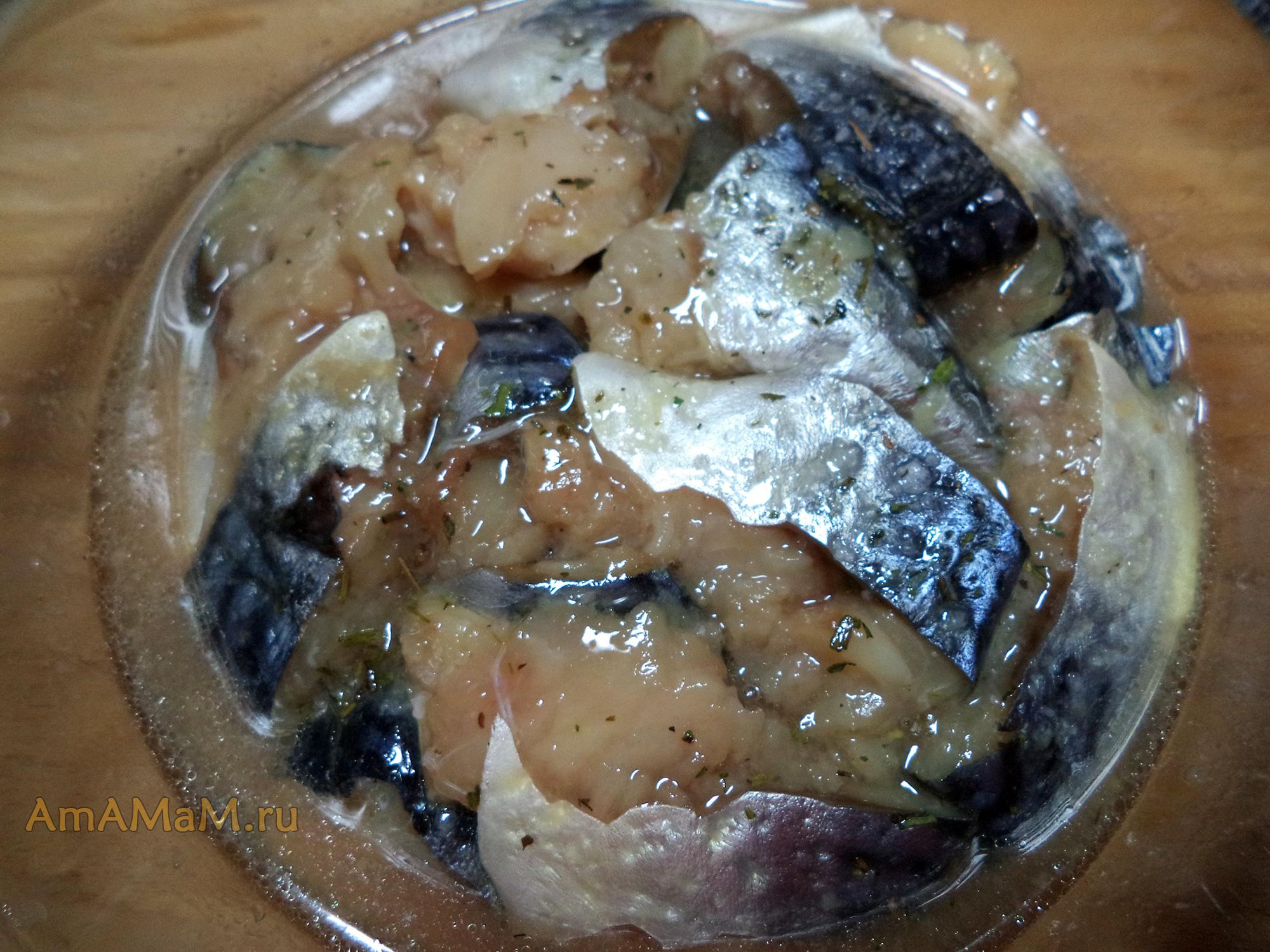 Скумбрия соленая в домашних условиях с луком рецепт