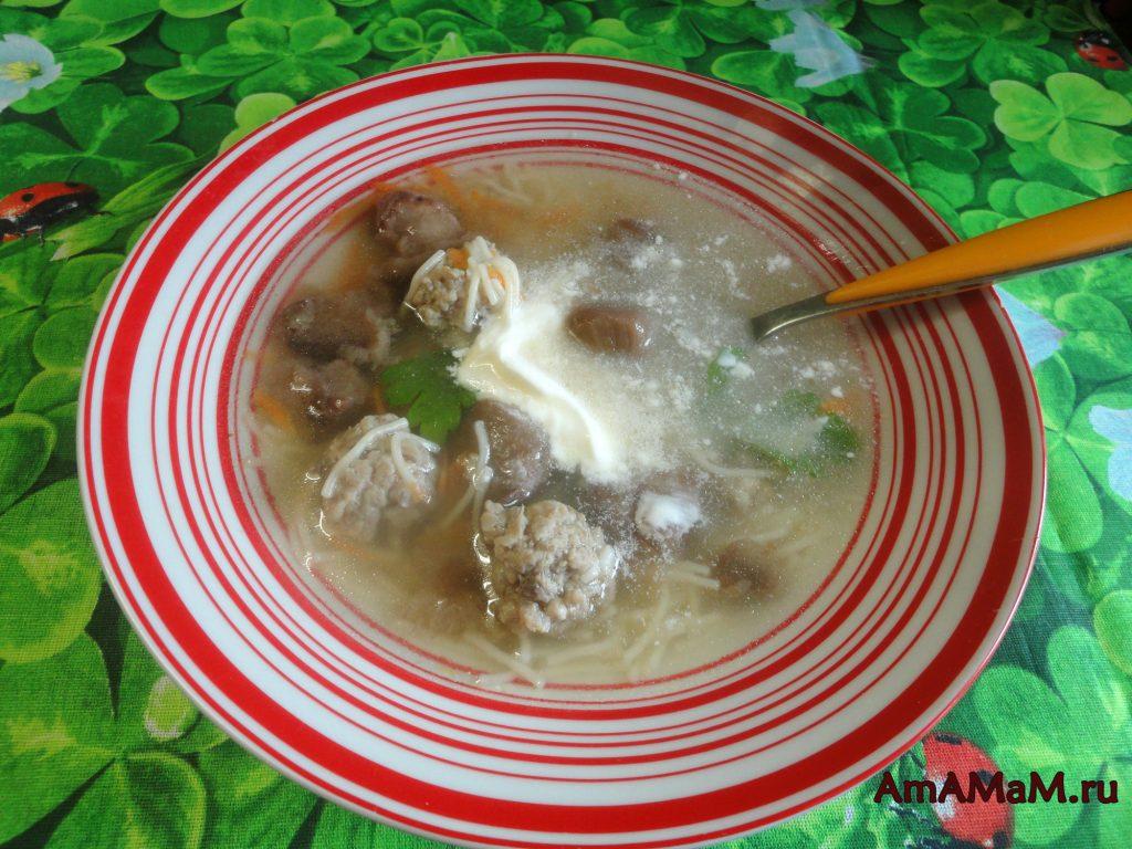 Суп грибной с фрикадельками, вермишелью и сметаной