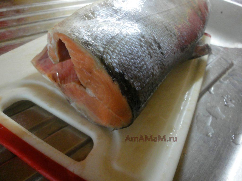 Как выглядит рыба кета - фото и рецепт