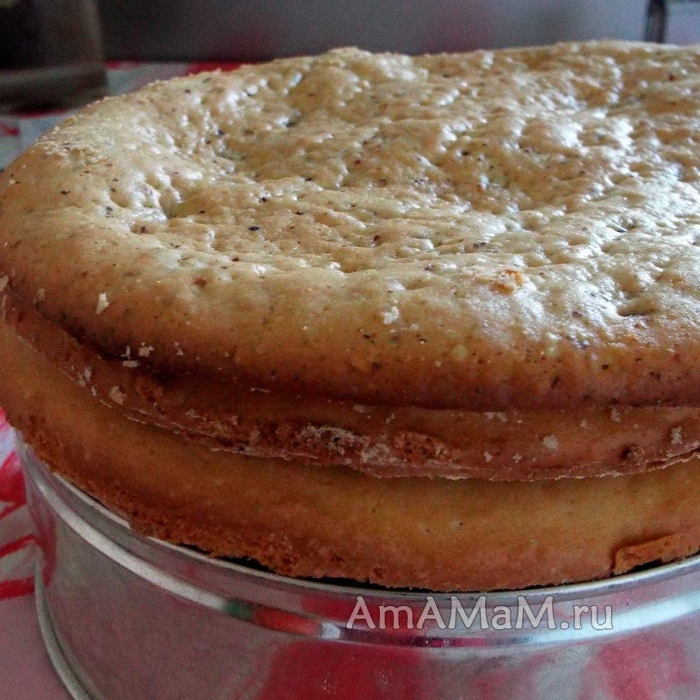 Рецепт сухих коржей для торта