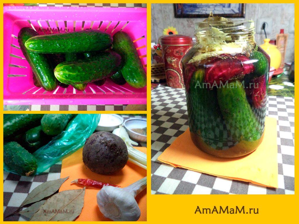 Как делают абхазские огурцы - анашарцвы - рецепт и фото