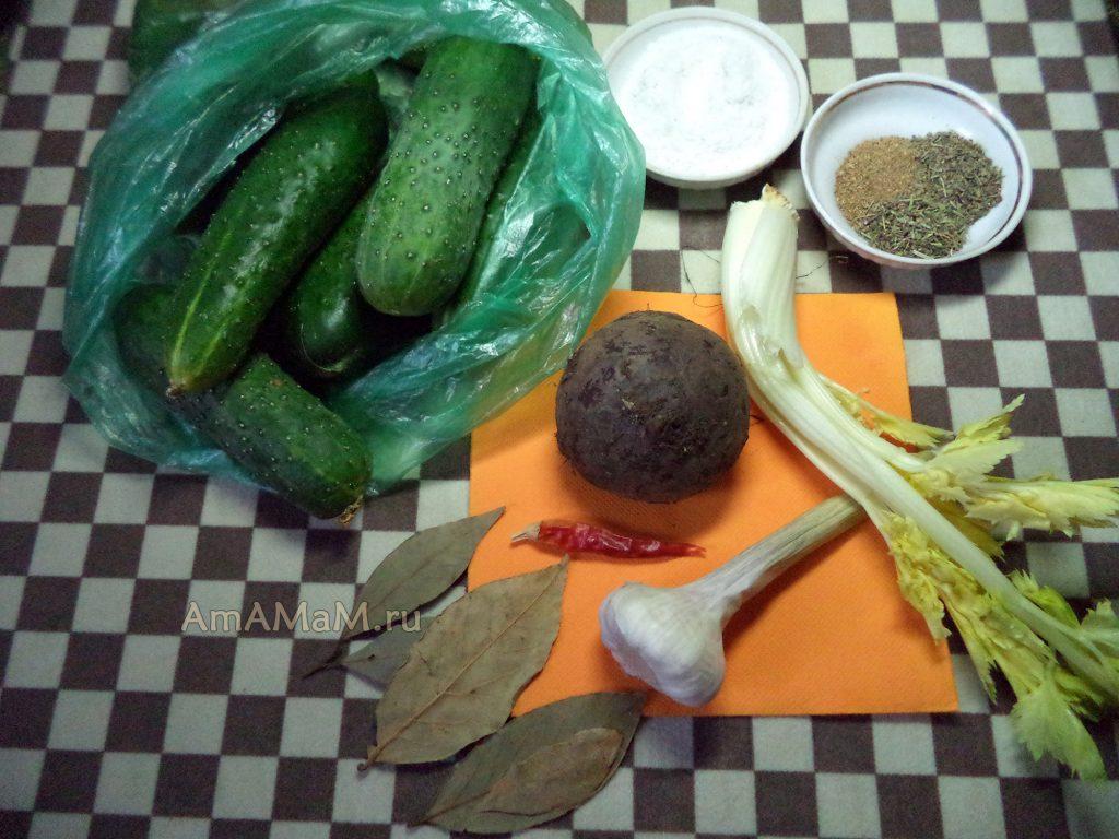 Приготовление вкусных малосольных огурцов - рецепты