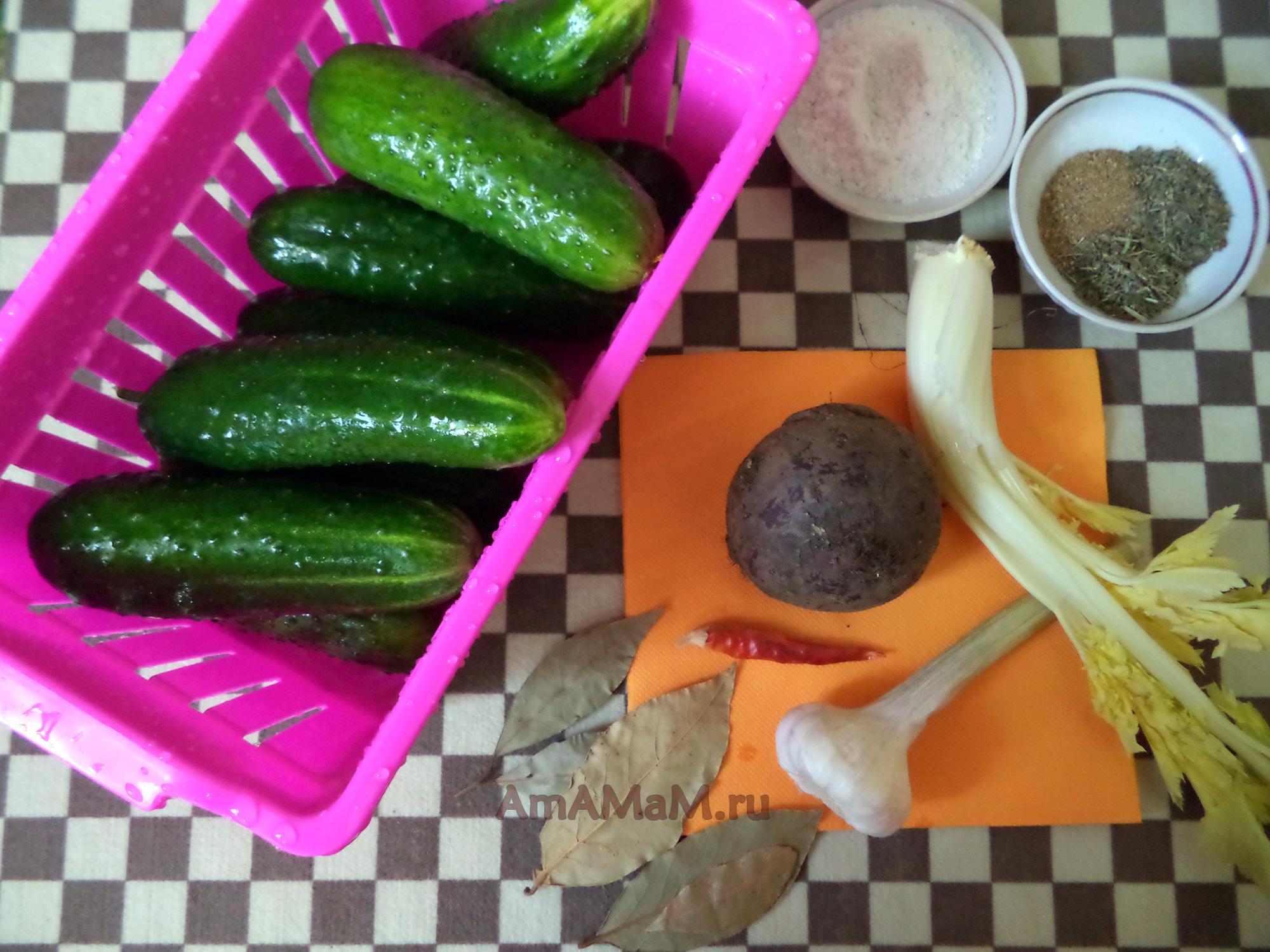 рецепт малосольных огурчиков быстрого приготовления в пакете