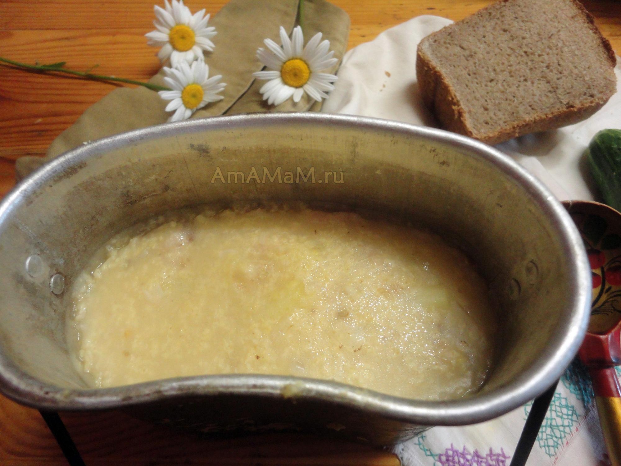 рецепт куриный торт с грибами