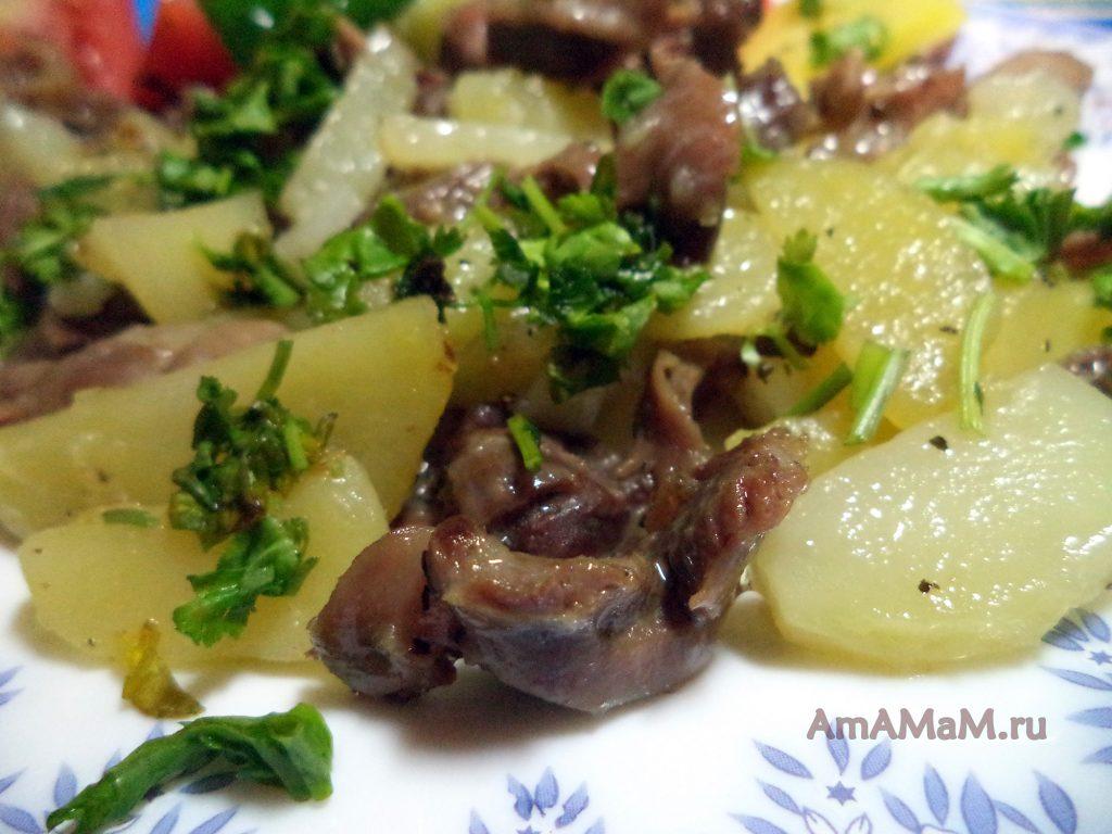 Жареная картошка с куриными желудками