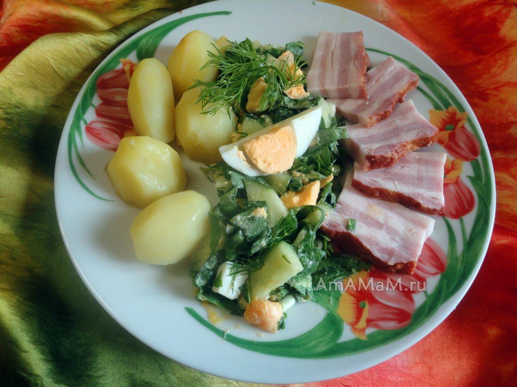 Вкусные блюда со щавелем - рецепты