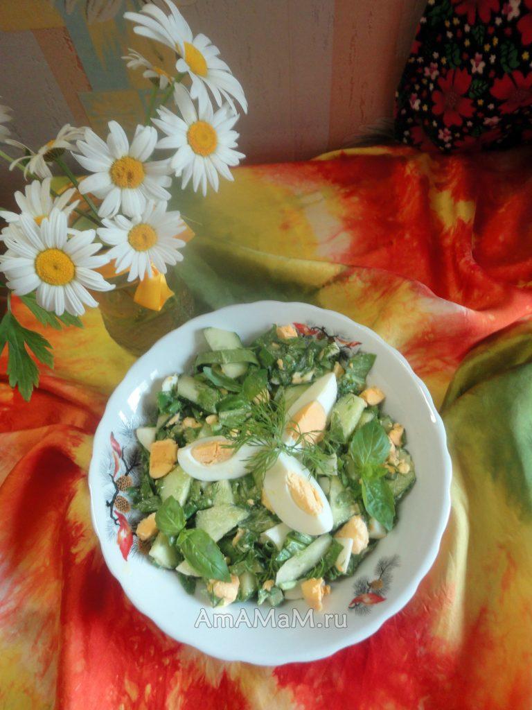 Что сделать со щавелем - рецепты