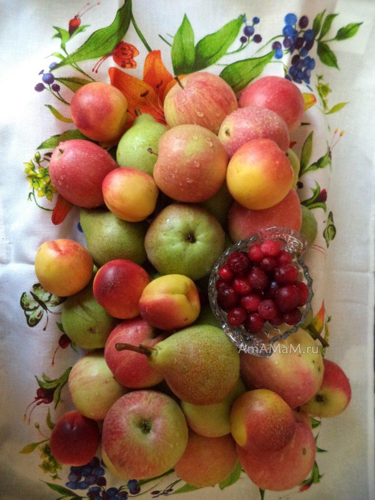 Красивые летние фрукты и брусника