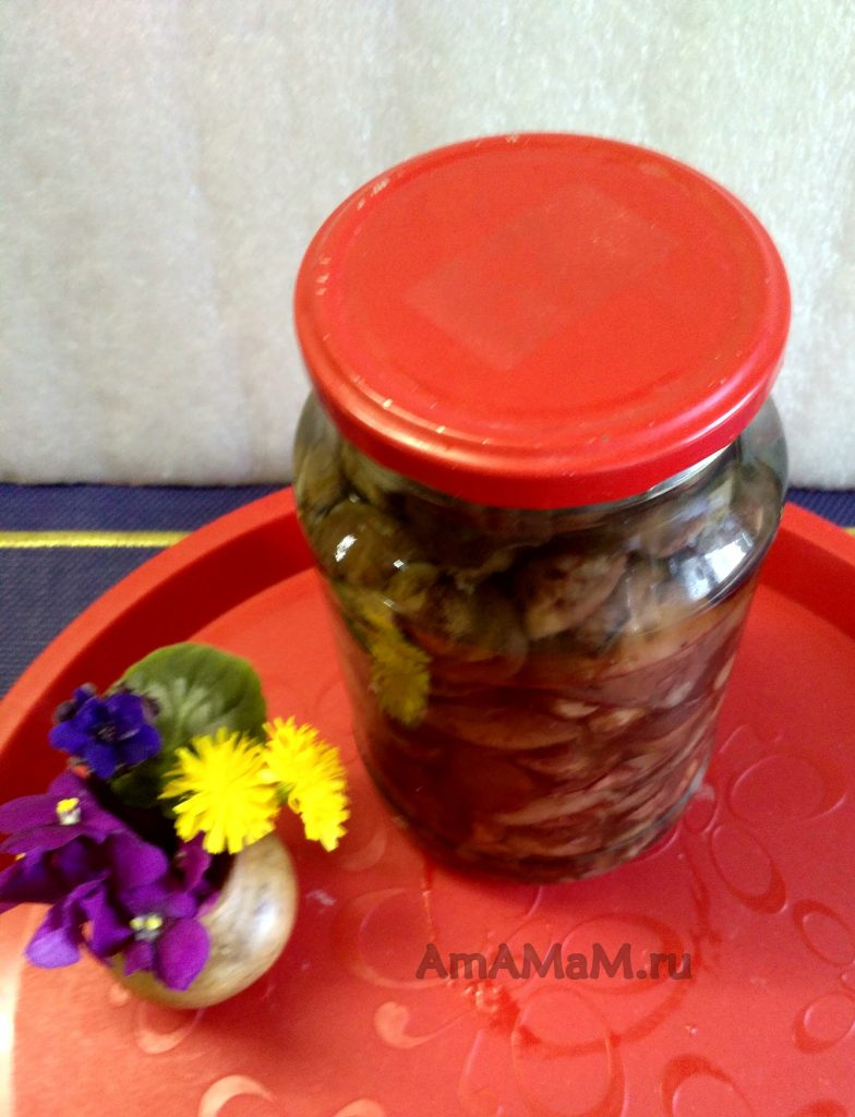 Маслята в маринаде - рецепты