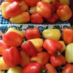 Рецепт салата на зиму из сладкого перца