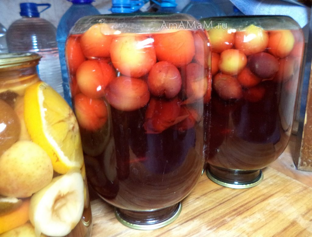 Заготовка слив - рецепт компота на зиму