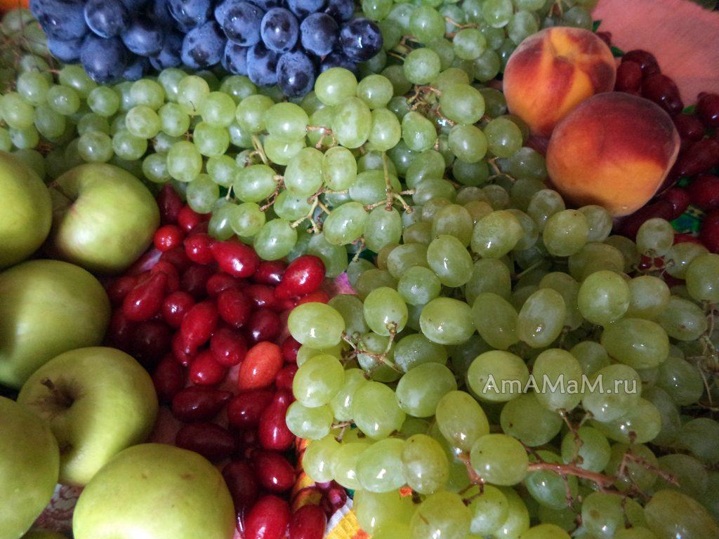 Рецепт виноградного компота домашнего приготовления