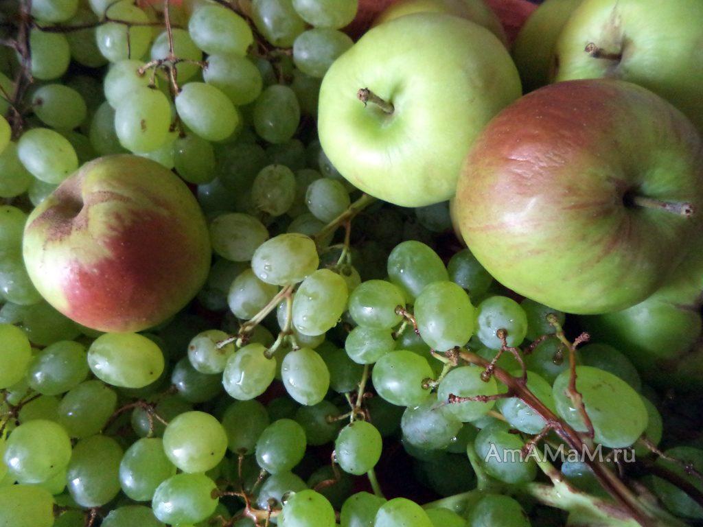 Яблоки и виноград для компота