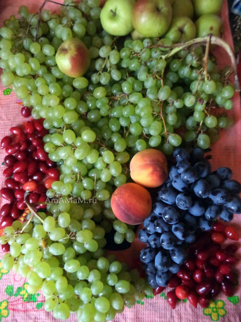 Виноград и фрукты, которые можно добавить в виноградный компот