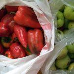 Антоновка и болгарский перец