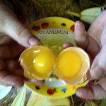 Желтки - два в одном яйце