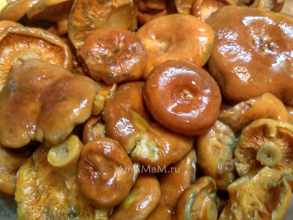 Рецепт голубцы с китайской капустой рецепт с фото пошагово в духовке