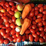 Помидоры, яблоки, морковь и чеснок - состав и рецепт томатного соуса в домашних условияъ