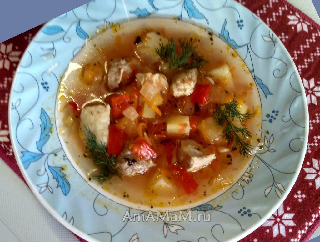 Вкусный томатный суп - рецепт на бульоне из сввинины