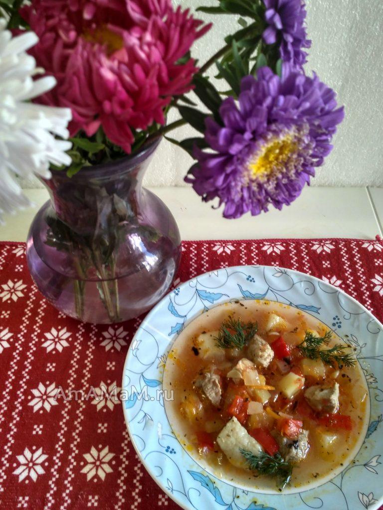 Суп томатный со свининой и овощами